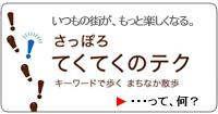 bnr_guidebook.jpg